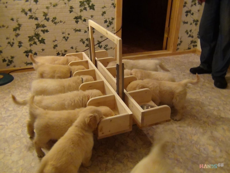 Ящик для щенков своими руками