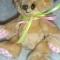 Купить Медвежонок Любимка, Мишки, Зверята, Куклы и игрушки ручной работы. Мастер Юлиана Илотовская (Ilotoshka) . для детей