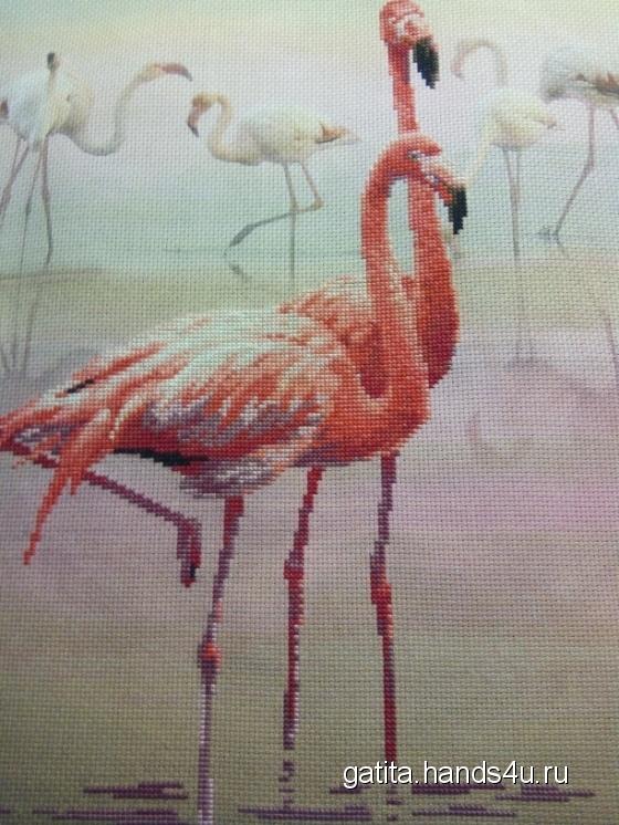 Купить Фламинго, Животные, Картины и панно ручной работы. Мастер Татьяна  (Gatita) . 100 хлопок