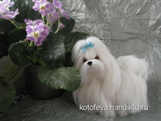 Купить Мальтезе - собака мальтийских рыцарей , Собаки, Зверята, Куклы и игрушки ручной работы. Мастер   (KotoFeya) . интерьерная игрушка