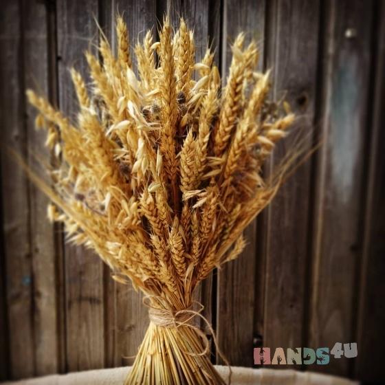 Купить Букет из сухоцветов, Элементы интерьера, Для дома и интерьера ручной работы. Мастер Алла  (allochka75) . сухоцветы
