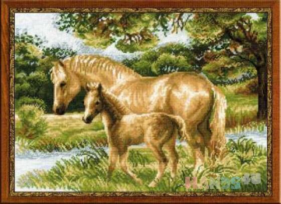 Купить Лошадь с жеребенком, Животные, Картины и панно ручной работы. Мастер Анна Серая (AnnaGray79) . канва аида-16