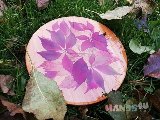 Купить Разделочная доска Осень, Посуда ручной работы. Мастер Светлана  (sv-bof) . костеры