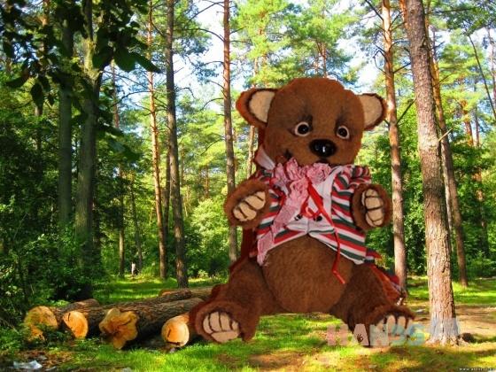 Купить Медвежонок Прошик, Мишки, Мишки Тедди, Куклы и игрушки ручной работы. Мастер Юлия Михайлова (jmikh69) . коричневый