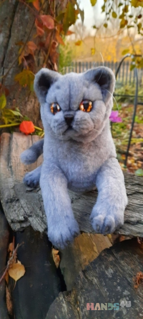 Купить Британская кошечка-экзот, Коты, Зверята, Куклы и игрушки ручной работы. Мастер   (Avi) . искуственный мех