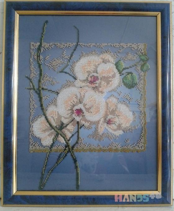 Купить картина бисером Орхидеи, Картины цветов, Картины и панно ручной работы. Мастер Евгения Закора (gold-thread) .