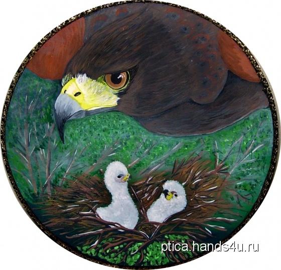 Купить Панно настенное Хищное счастье, Животные, Картины и панно ручной работы. Мастер Птица Летящая (Ptica) .