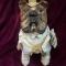 Купить Интерьерная текстильная игрушка Бульдог-Банкир, Текстильные, Коллекционные куклы, Куклы и игрушки ручной работы. Мастер Марина Непомнящая (MarinaNep) . интерьерная текстильная игрушка