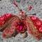 Купить Брошь жук  Розочка, Броши, Украшения ручной работы. Мастер Валерия  (LeVale) . авторская брошь купить