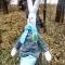 Купить ЗАЯЦ, Куклы Тильды, Куклы и игрушки ручной работы. Мастер ЮЛИЯ ПЕРВУШИНА (YULIYAP) . заяц игрушка