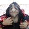 Купить Кукла попик Ягуся, Смешанная техника, Человечки, Куклы и игрушки ручной работы. Мастер Наташа Облогина (Natasha898) . капрон