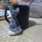 Купить Сфинкс Гея, Коты, Зверята, Куклы и игрушки ручной работы. Мастер юлия святогор (IRMIT) . 100 пр шерсть