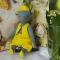 Купить Мишка Берти, Мишки, Мишки Тедди, Куклы и игрушки ручной работы. Мастер Ольга Юзмухаметова (Bozhena23) . авторский мишка