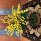 Купить Яркое дерево мимозы из бисера, Элементы интерьера, Для дома и интерьера ручной работы. Мастер Ирина Долгополова (Biserok) . 8 марта подарок