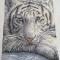 Купить Белый тигр, Животные, Картины и панно ручной работы. Мастер Николай Гусев (Nikolai) . вышивка