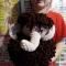 Купить Мамонтенок, Другие животные, Зверята, Куклы и игрушки ручной работы. Мастер Лиля Хабибуллина (listada) . мамонтенок
