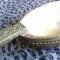 Купить Скопкарь, Посуда, Русский стиль ручной работы. Мастер Николай Ванюшин (waniwi) . резьба по дереву