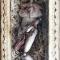 Купить крысёнок Флю, Текстильные, Коллекционные куклы, Куклы и игрушки ручной работы. Мастер Екатерина Ким (Kakimura) . наполнитель - синтепух