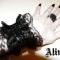 Купить Изящное украшение на руку, Текстильные, Браслеты, Украшения ручной работы. Мастер   (Lorylin) . готика