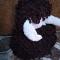Купить Мамонтенок, Другие животные, Зверята, Куклы и игрушки ручной работы. Мастер Лиля Хабибуллина (listada) . игрушка для детей