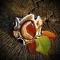 Купить Авторский браслет Еthnic, Вышивка, Бисер, Браслеты, Украшения ручной работы. Мастер Галина Бурковецкая (GBhandmade) .
