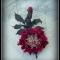 Купить Брошь из натуральной кожи СТАРАЯ АНГЛИЯ, Броши, Украшения ручной работы. Мастер Светлана Чалая (guska) . брошь в форме цветка
