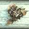 Купить Брошь из натуральной кожи ТАЙНА НА ДВОИХ, Кожаные, Броши, Украшения ручной работы. Мастер Светлана Чалая (guska) . брошь