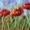 Купить Картина из шерсти Маки, Картины цветов, Картины и панно ручной работы. Мастер Марина Кринина (zvezda514) . картина в подарок