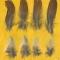 Купить Перья птицы Сизоворонка, Перья, Другие виды рукоделия ручной работы. Мастер Птица Летящая (Ptica) .