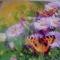 Купить Бабочки в цветах, Картины цветов, Картины и панно ручной работы. Мастер юлия лел (vesnulea) . акриловые стразы