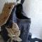 Купить рюкзак из джинсовой ткани и макраме с цветком, Рюкзаки, Сумки и аксессуары ручной работы. Мастер Ирина Макрушина (irina67) . женские сумки
