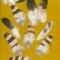 Купить Перья для рукоделия - 3, Перья, Другие виды рукоделия ручной работы. Мастер Птица Летящая (Ptica) .
