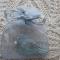 Купить Брошь Мятная птичка, Вышивка, Бисер, Броши, Украшения ручной работы. Мастер   (Brooch-shop) . авторские украшения ручной работы