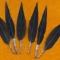 Купить Перья птицы Большой пёстрый дятел, Перья, Другие виды рукоделия ручной работы. Мастер Птица Летящая (Ptica) .