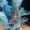 Купить Брошь русалка  Мечты русалки, Полудрагоценные камни, Камни и жемчуг, Броши, Украшения ручной работы. Мастер Roses Peaches (PeachesRoses) . брошь русалка