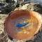 Купить Синяя рыбка нарисована в кокосе, Картины и панно ручной работы. Мастер Марина Калиновская (Aeroart) . интерьерная картина