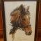Купить Вышитая картина Булат, Животные, Картины и панно ручной работы. Мастер Екатерина  (LimeLight) . конь