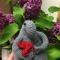 Купить Ждун, Сувениры и подарки ручной работы. Мастер Александра Егорова (Sandra) . вязаная игрушка