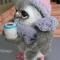 Купить Совушка, Птицы, Зверята, Куклы и игрушки ручной работы. Мастер Ольга Батракова (Helgshka) . валяная игрушка