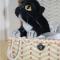 Купить котенок из войлока, Коты, Зверята, Куклы и игрушки ручной работы. Мастер Светлана Петрова (Svetlana207) .