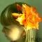 Купить Лилия из атласа, Заколки, Украшения ручной работы. Мастер Елена  (Lena) . микробисер