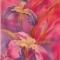 Купить Ирисы сибирские, Женские, Шарфы, шарфики и снуды, Аксессуары ручной работы. Мастер Надежда Ненахова (NNad) . батик