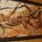 Купить Картина Наскальная живопись Носороги, Животные, Картины и панно ручной работы. Мастер Olga Litvinova (olli-felt) . картина для мужчины